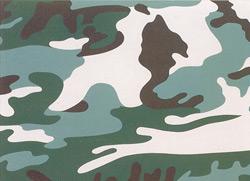 camouflage.jpg